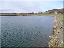 SE0028 : Old Town Reservoir, Wadsworth by Humphrey Bolton
