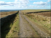 NY5775 : Path and fell gate by David Brown
