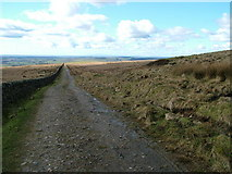NY5776 : Path on Grey Hill by David Brown