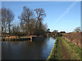 SJ6153 : Late afternoon sun on the canal, Burland by Espresso Addict