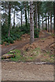 SU4016 : Bikers' Paths up Castle Hill, Lord's Wood by Peter Facey