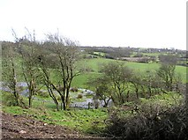 H5371 : Bracky Townland by Kenneth  Allen