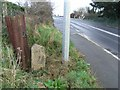 O0750 : Milestone south of Ashbourne, Co. Meath by JP