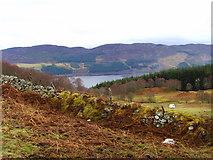 NH5533 : Moorland near Corryfoyness by sylvia duckworth