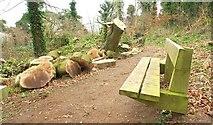 J4772 : Seat, Killynether Wood, Newtownards by Albert Bridge