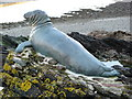 SX2553 : Looe: Statue of 'Nelson' the seal by Brian