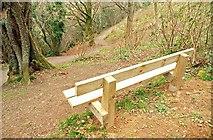 J4772 : New seat, Killynether Wood, Newtownards by Albert Bridge