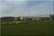 SJ3464 : Daffs in bloom at the Airbus roundabout by David Long