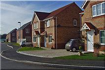 SE8912 : Normanby Grange, Scunthorpe by Paul Harrop
