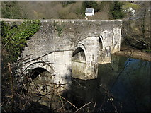 SX4372 : New Bridge, Gunnislake by Brian