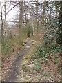 SU8255 : Footpath, Ancells Farm by Rich Tea