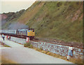 SX9473 : Watching the trains at Teignmouth by Stephen Craven