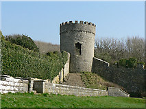 SS8872 : Tower in Dunraven Castle Walled Garden. by Mick Lobb