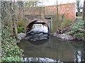 SU8771 : The Cut at Osbornelane Bridge, Newell Green by Nigel Cox
