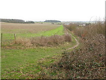 TR3051 : Looking S along field boundary with the A256 by Nick Smith