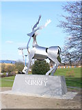SU9850 : University of Surrey by Colin Smith