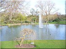 SU9850 : Lake on Surrey Campus by Colin Smith