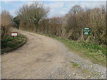 TQ2017 : Farm track to Great Betley Farm by Dave Spicer