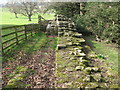 NY9269 : Hadrian's Wall and Turret 26b (Brunton) (3) by Mike Quinn