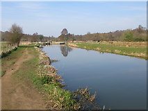 SU9947 : View along River Wey Navigation to St Catherine's Lock by Nick Smith