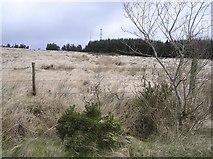 H6160 : Tullyglush Townland by Kenneth  Allen