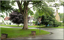 NZ4706 : A corner of the Green at Hutton Rudby by Geoff Royle