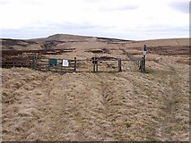 NT7810 : Border crossing on Dere Street by Oliver Dixon