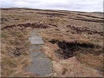 NT7811 : Pennine Way near Blackhall Hill by Oliver Dixon