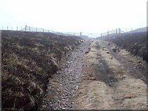NT8514 : Gate near the summit of Windy Gyle by Oliver Dixon