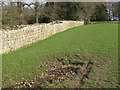 NY9269 : Spring by Hadrian's Wall near Turret 26b (Brunton) by Mike Quinn