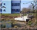 NZ3066 : Burnside School - Pond and dipping platform by Mac McCarron