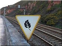 SX9777 : Low Rail Adhesion Site Commencement Board near Dawlish by Derek Harper