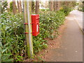 SU1004 : Ashley Heath: postbox № BH24 58, Lions Lane by Chris Downer
