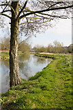 SU4828 : Path along River Itchen west of Gater Field by Peter Facey