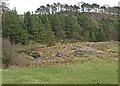 NS3764 : Locher Water, near Harelaw by wfmillar