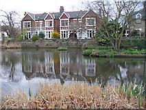 TQ1977 : Kew Green Pond by Colin Smith