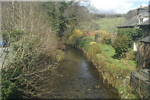 SD3097 : Yewdale Beck, from the 505 bus on the B5285 by David Long