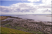 NU1341 : Foreshore, Lindisfarne, Holy Island, Northumberland by Christine Matthews
