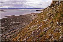 NU1341 : Cliff, Lindisfarne, Holy Island, Northumberland by Christine Matthews