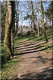 SX4970 : Whitchurch: Drake's Trail 2 by Martin Bodman