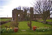 NU1241 : Manor House Hotel garden, Holy Island, Northumberland by Christine Matthews