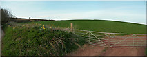 ST0215 : Mid Devon : Hillside in the Country by Lewis Clarke