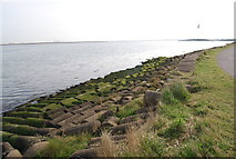 TQ8068 : Concrete defences by the Saxon Shore way by N Chadwick