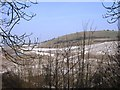 SP9414 : Pitstone Hill - Looking across the quarry by Chris Reynolds