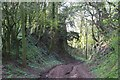 SJ4748 : Sandstone cutting on Kidnal Hill by Dave Dunford