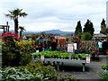SO3808 : Raglan Garden Centre plant area 1 by Jonathan Billinger