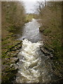SD5189 : River Kent by Alexander P Kapp