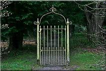 NS4187 : Garden Gate by George Rankin