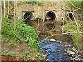 SJ7209 : Wesley Brook joins with other drainage by Mike White