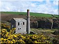 SX0786 : Ruined engine house, Prince of Wales Quarry by David Martin